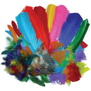 Feathers, Bumper School Pack, Assorted Styles & Colours 100g